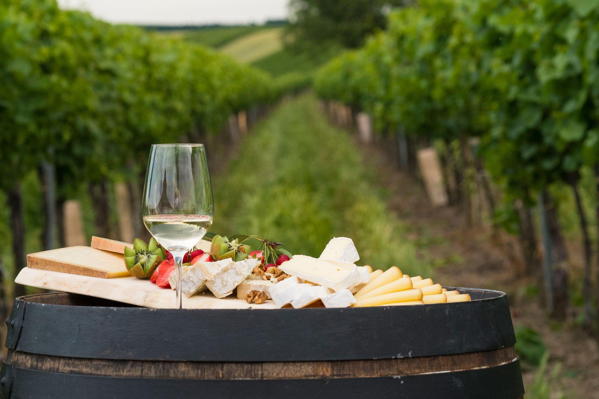 Weinherbst Weinviertel